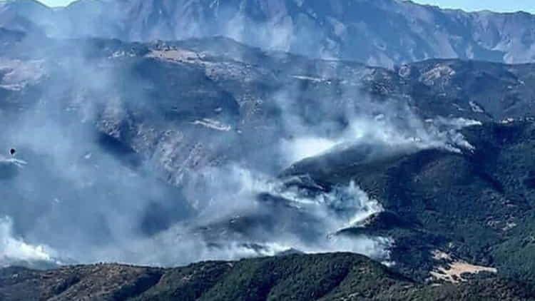 dersim hozat orman yangını